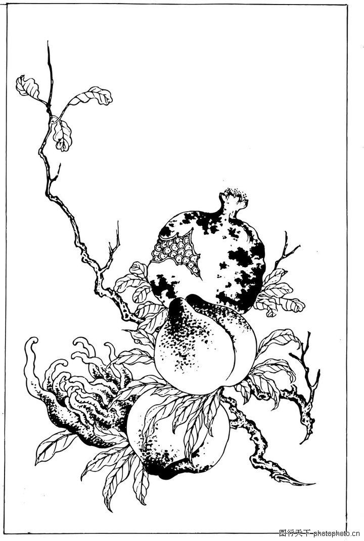 复杂果树怎么画