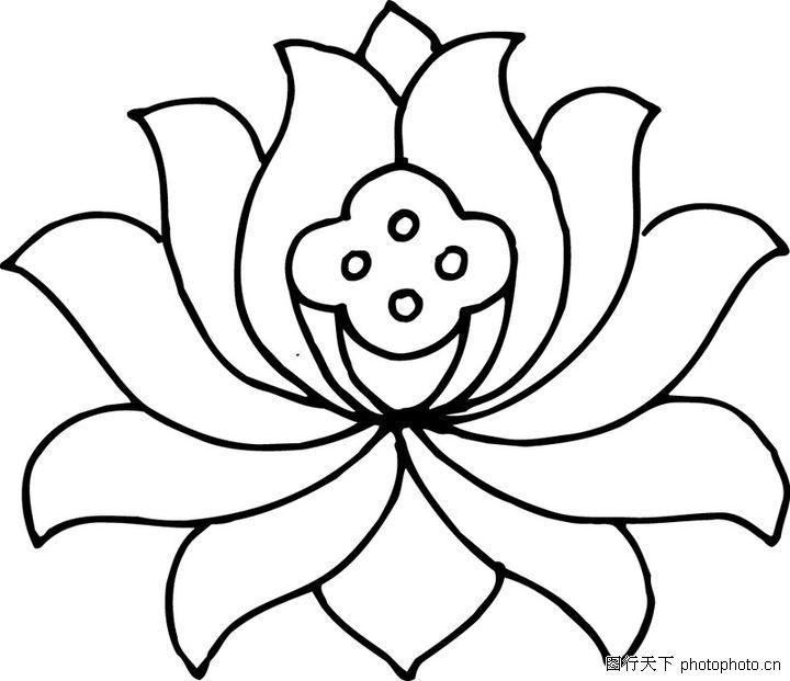 关于花的简笔画大全