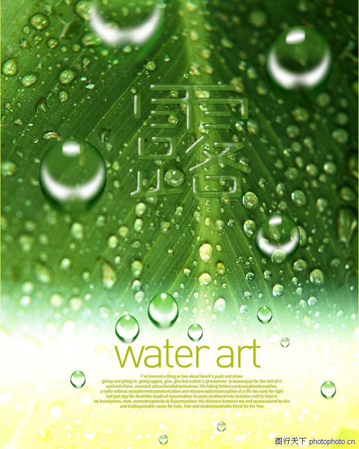 海报,东方设计元素,水珠特写 清晰叶脉 水露,海报0075