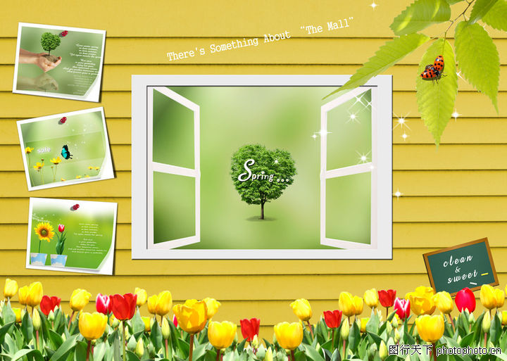 景物静物,韩国花纹Ⅲ,花草 树叶 窗户,景物静物0153