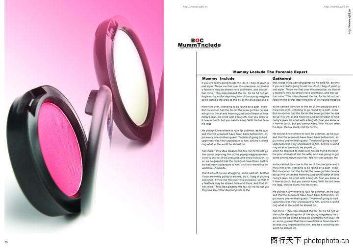 化妆品,版式设计,腮红 玫瑰红 介绍,化妆品0013