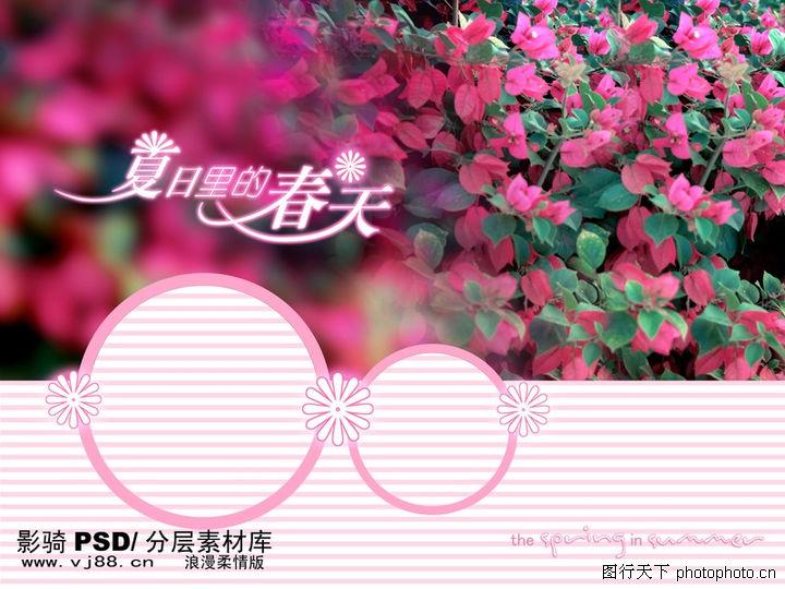 浪漫柔情模板4,浪漫柔情模板,花卉 叶子 圆圈,浪漫柔情模板40061