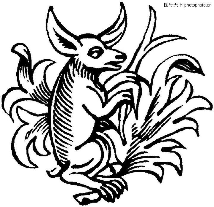 古典纹饰 底纹背景 动物 素描 画画