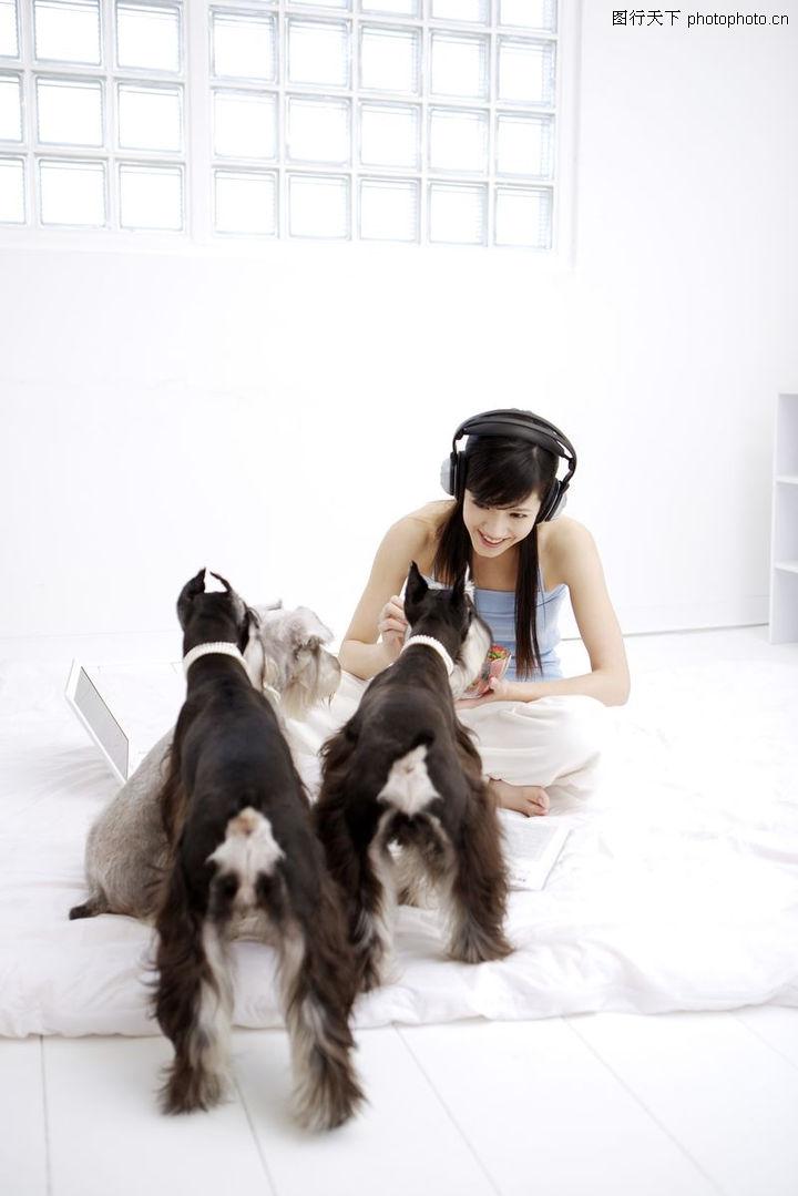 女性宠物,生活方式,客厅 庞物家族 狗,女性宠物0053