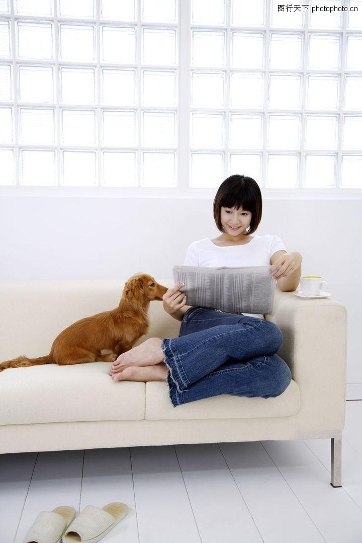 女性宠物,生活方式,沙发 狗 看报,女性宠物0059