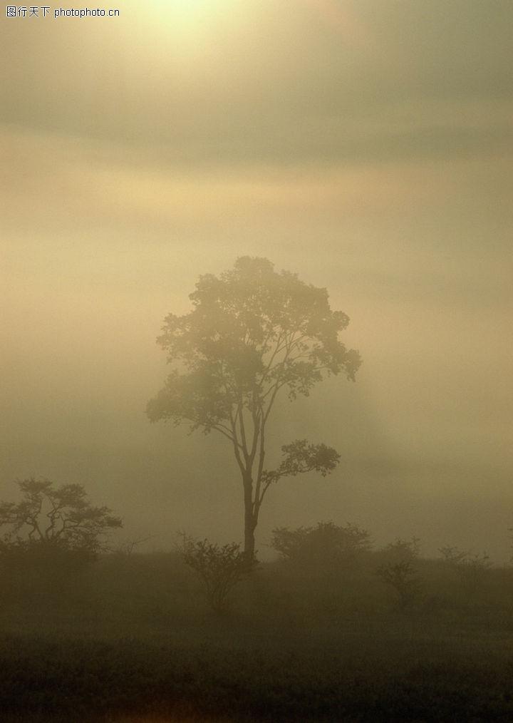 四季休闲,自然风景,晨雾 朝阳 乡村,四季休闲0075