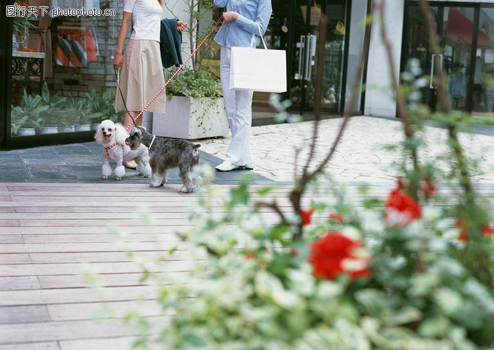 家有宠物,生活方式,户外,家有宠物0151