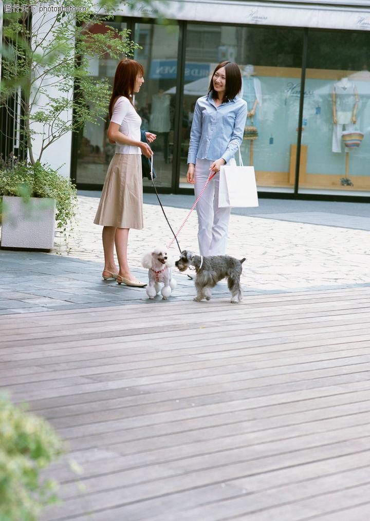家有宠物,生活方式,家庭宠物,家有宠物0153