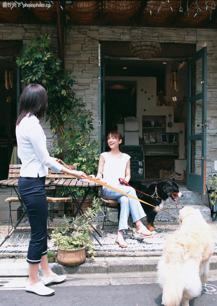 家有宠物,生活方式,牵狗散步,家有宠物0167
