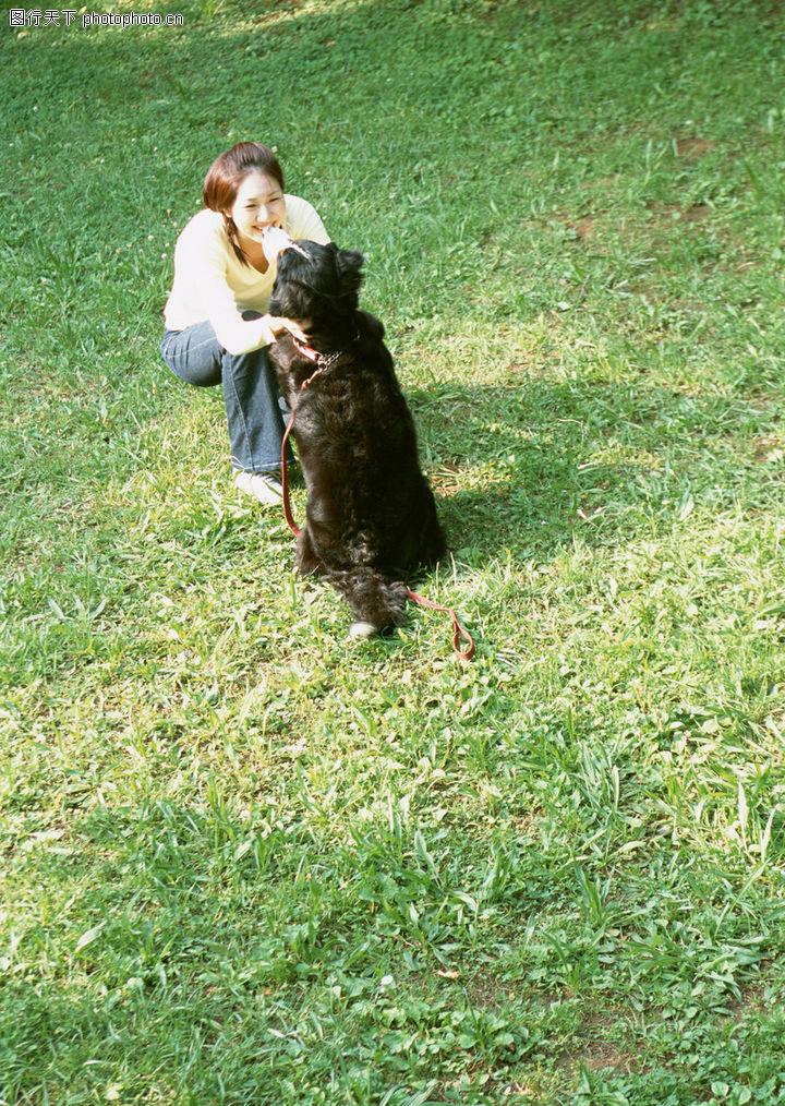 家有宠物,生活方式,小狗 户外休闲,家有宠物0182