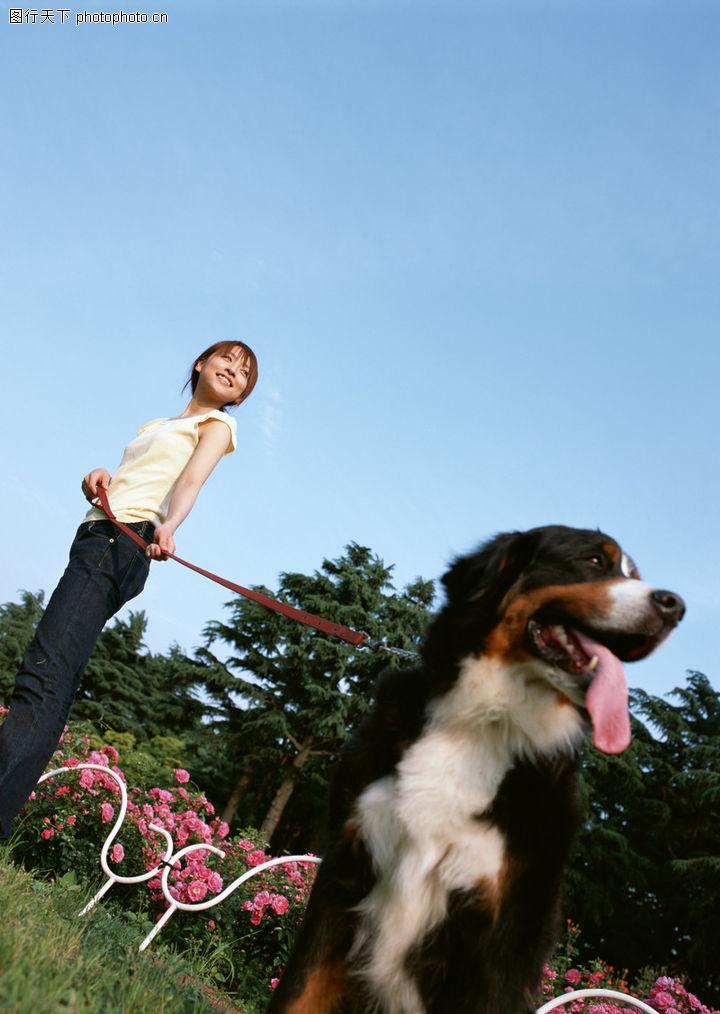 家有宠物,生活方式,溜狗,家有宠物0187