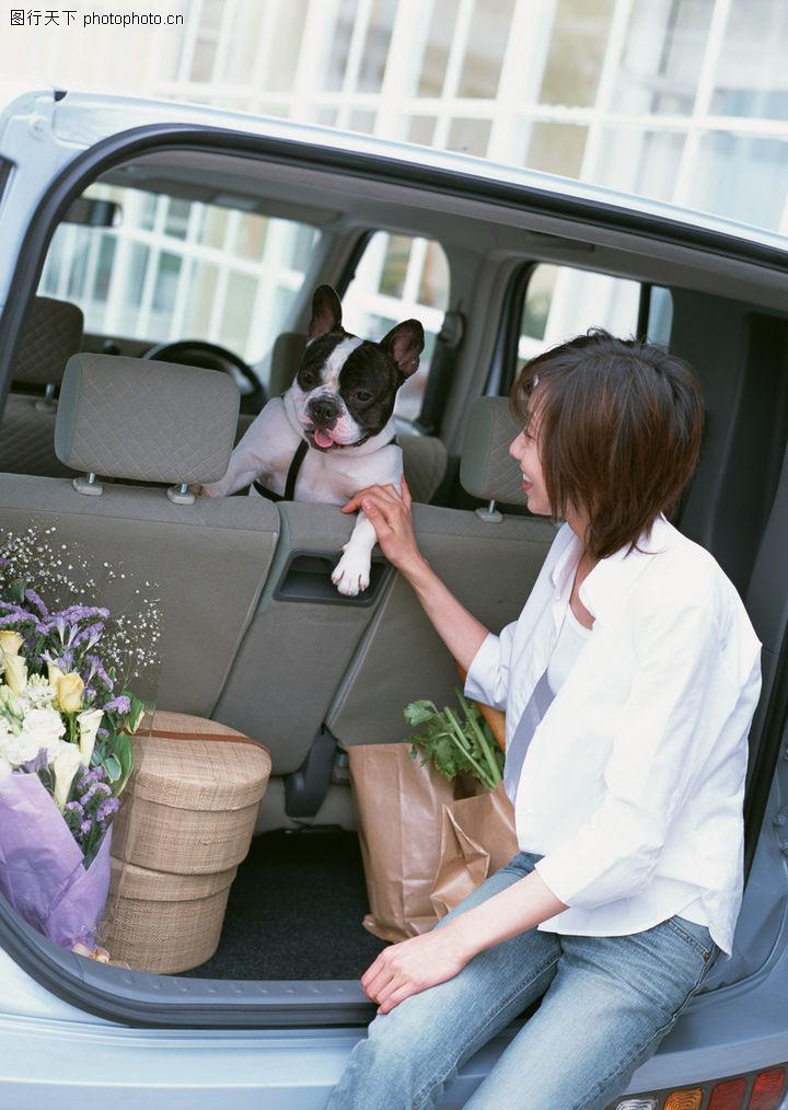 家有宠物,生活方式,车尾 私家车,家有宠物0190