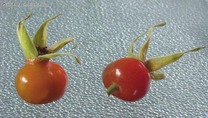 玫瑰果,水果食品,玫瑰果0001