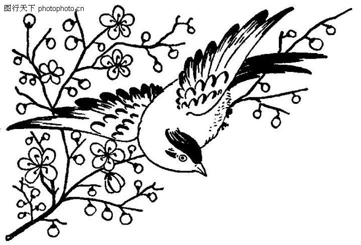 梅花树枝黑白简笔画