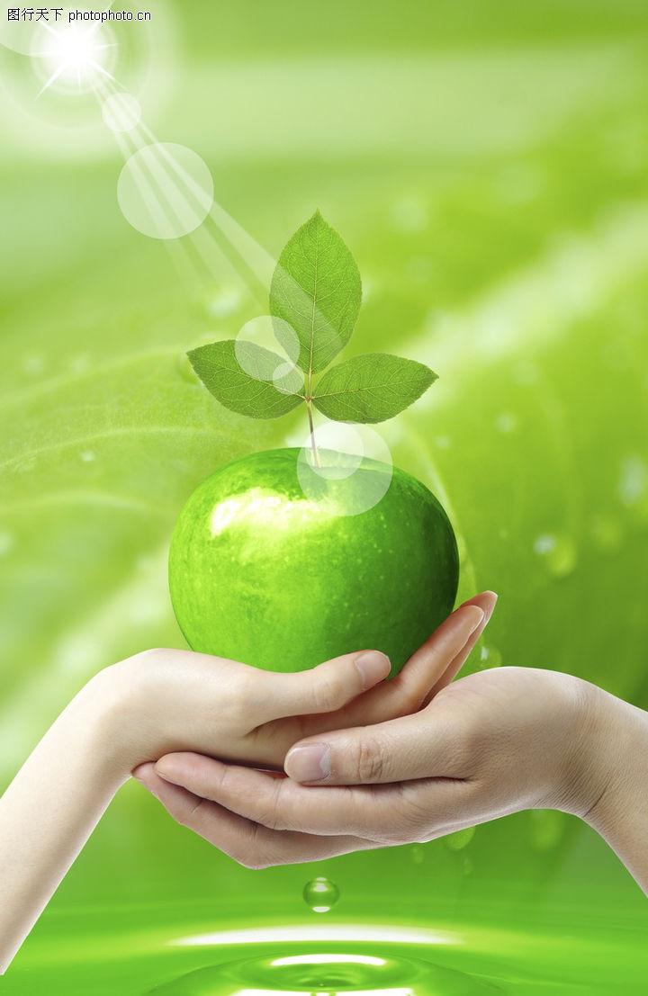 人物风景,韩国设计元素,手心 苹果 叶子,人物风景0133