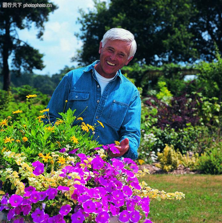 夕阳伴侣,老年人,花园的花儿,夕阳伴侣0090