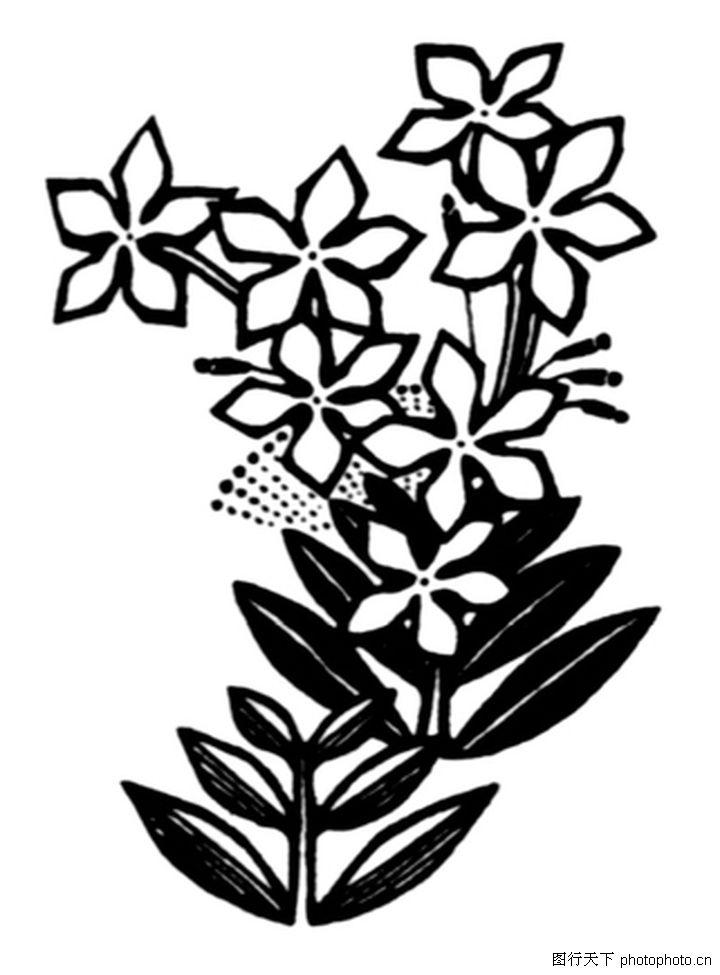 现代图案花纹0385