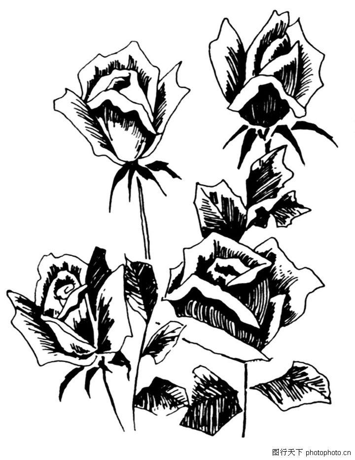 玫瑰花黑白图案设计图片; 现代图案花纹;; 现代图案花纹349.jpg