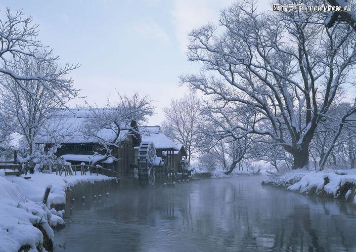 冬天雪景,季节节日,冬天雪景0254