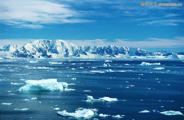 冰雪王国,动物,冰雪王国0073 冰雪王国 动物评 级:编 号:A0180870073版 权: