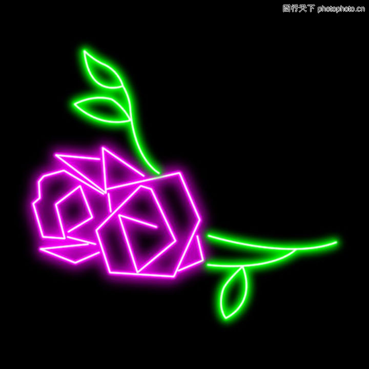 植物/植物0015