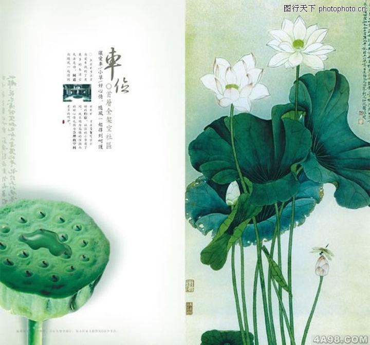 中国元素风格画册集,画册大赏,中国元素风格画册集0214