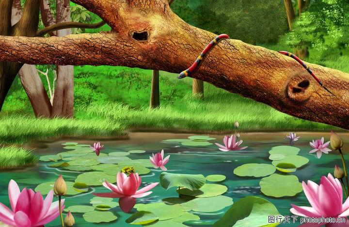 大自然景观,风景,大自然景观0077